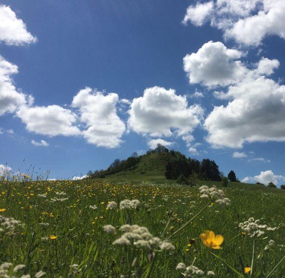 Berg Hohenkarpfen in Hausen ob Verena
